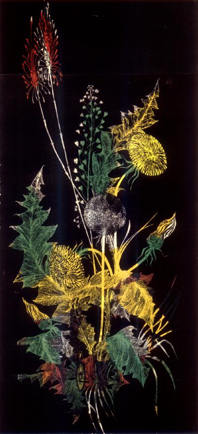 stampa cu flori de camp